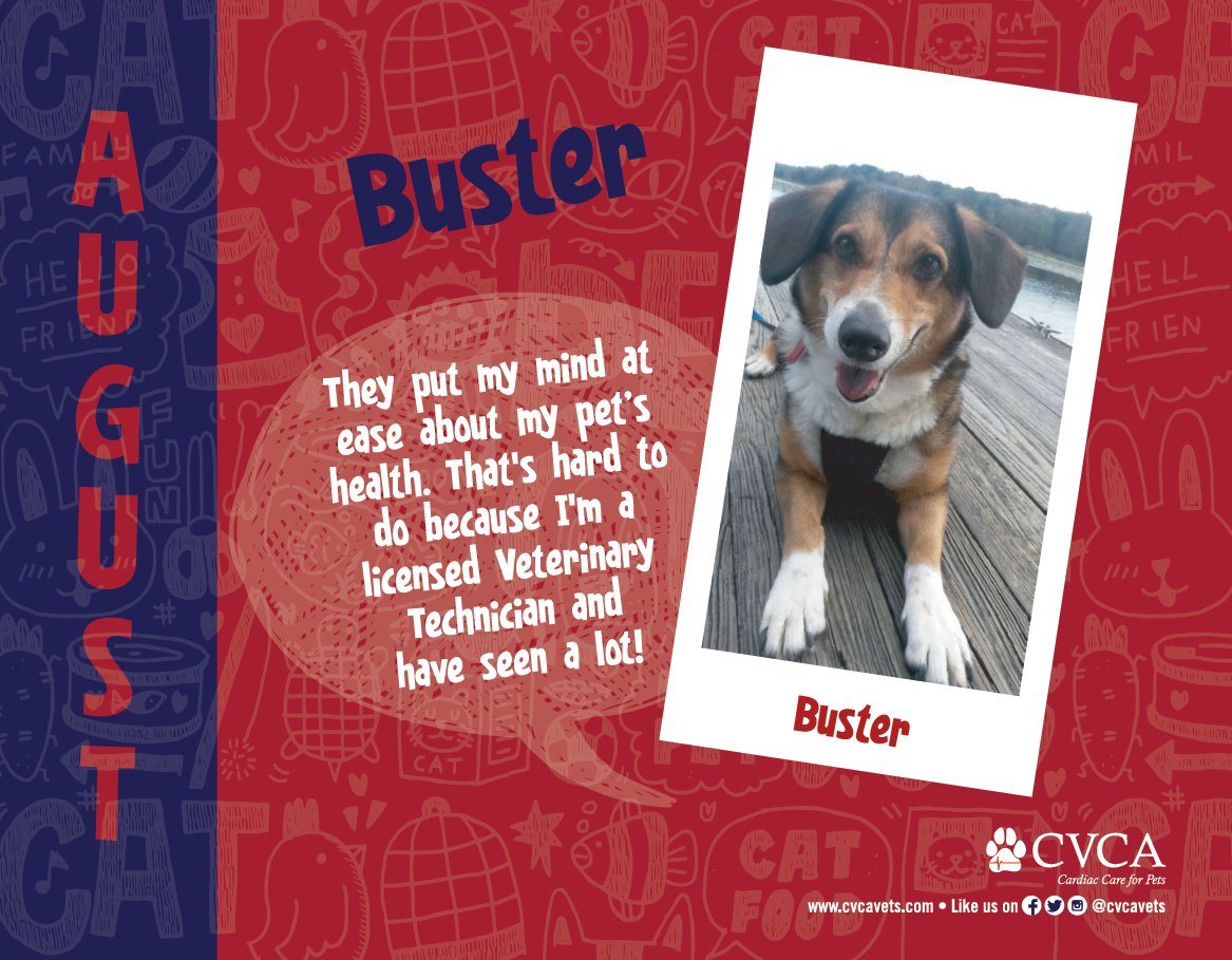 Buster- August