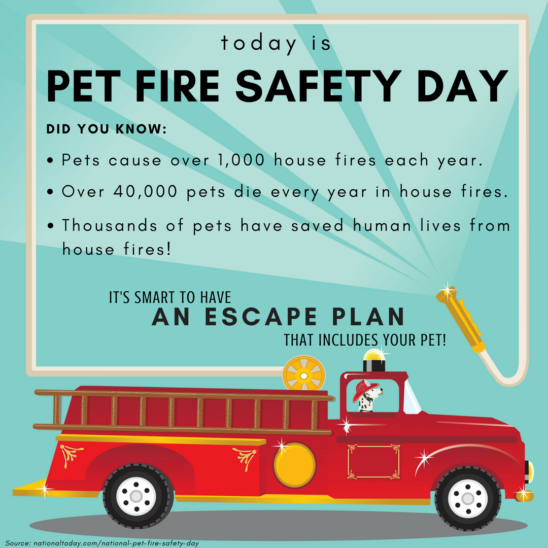 Pet Fire Safety - with source info